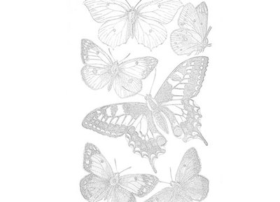 butterfly,butterflies,colouring page,nature