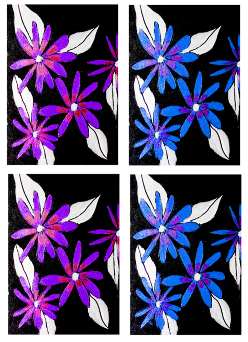 cardmaking,scrapbooking,floral,clipart  - Floral Card Toppers