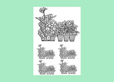 colouring page,garden,flowers,seedlings