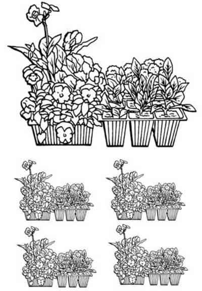 colouring page,garden,poster