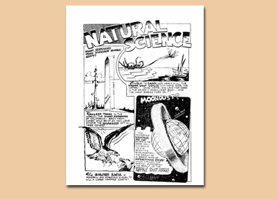 fact sheet,comic book page,wotalife colouring page,science