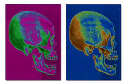 halloween poster, skull poster,halloween decorations