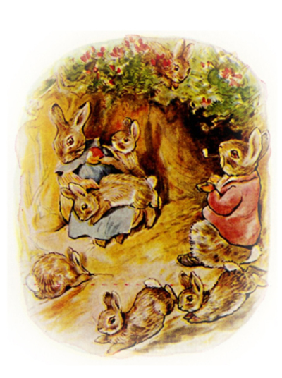 rabbit,peter rabbit wall sheet,beatrix potter,bunnies,vintage