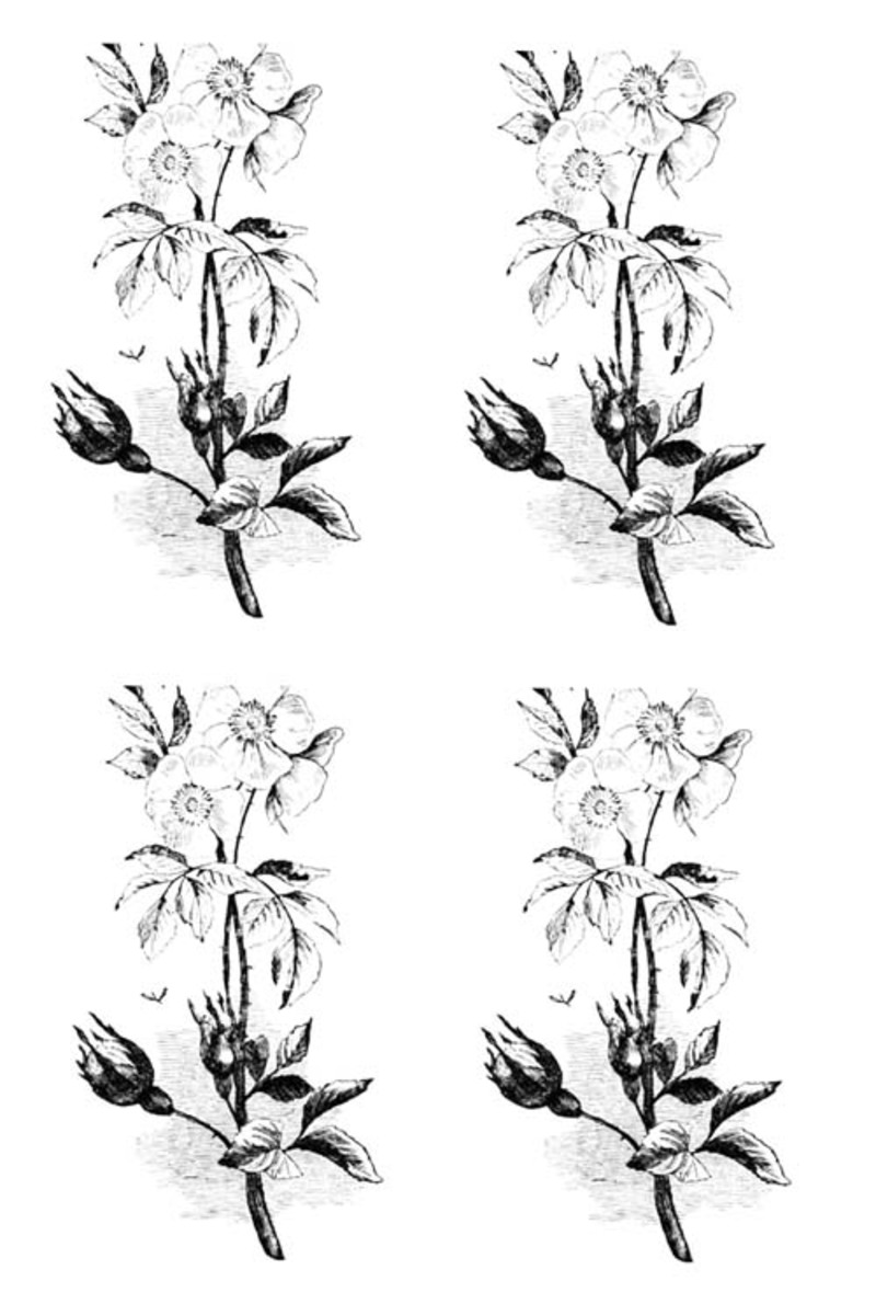 vintage image set3,vintage,printable,free printable