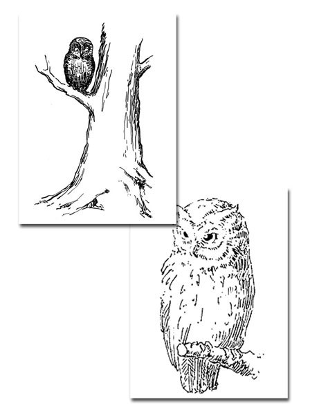 retro owl coloring pages | vintage,owl,animal,free vintage printable,colOURING PAGE ...